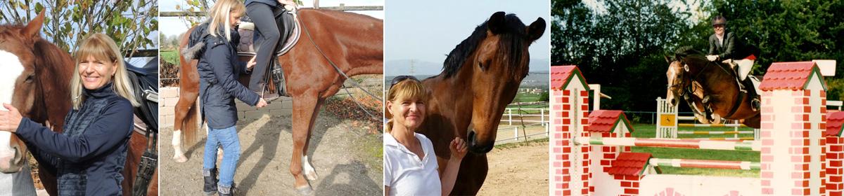 Pferde & Reiter Ausbildung / Equitación sana
