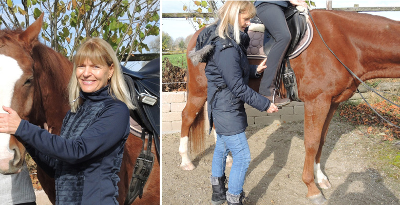 Centered Riding - Katja Wiesebach
