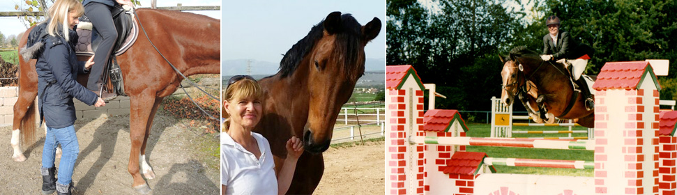 Pferde & Reiter Ausbildung / Equitación holística
